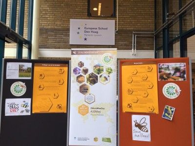 European School The Hague is celebrating World Bee Day