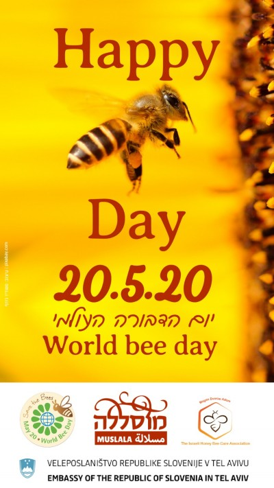 World bee day - A festive online gathering in honor of the World Bee Day